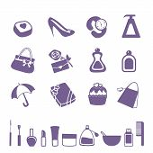 purple modern vector women accessories icon set poster
