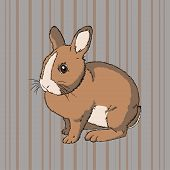 Vector illustration of fluffy brown  sitting rabbit on striped background poster