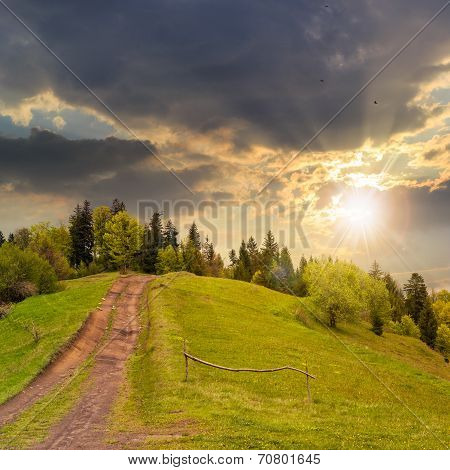 Path To Mountain Forest At Sunset