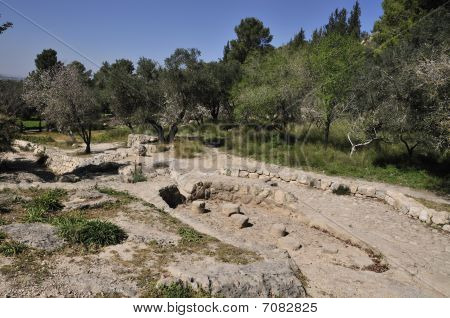 Park Canada place of the rest vicinity ancient city Emmaus in Israel poster