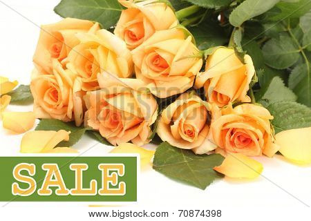 Concept of discount. Beautiful bouquet of roses