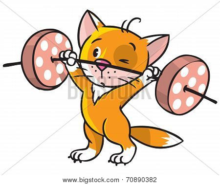 poster of Children vector illustration of funny red kitten-athlete with white paws lifts the barbell from pieces of sausage