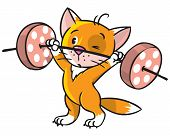 Children vector illustration of funny red kitten-athlete with white paws lifts the barbell from pieces of sausage poster