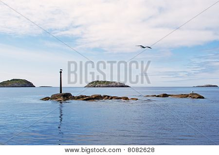 Seagulls on a stone in the Norwegian sea poster