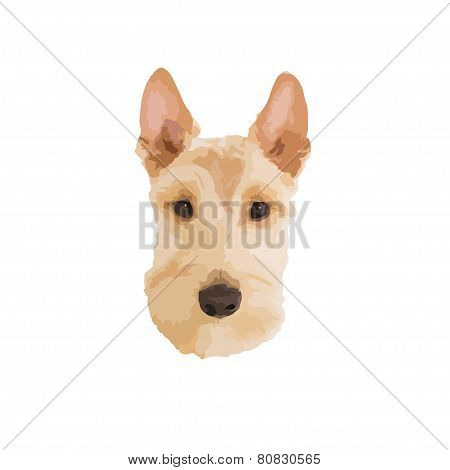 scottie dog head