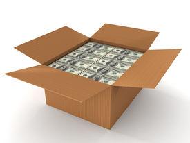 100 Dollar Bills In Cardboard