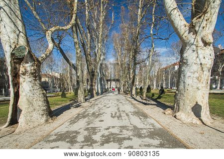 Park Zrinjevac in center of Zagreb, Croatia in spring poster