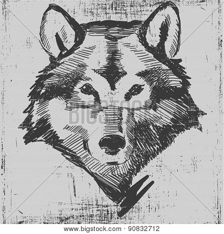 Wolf head hand drawn sketch grunge texture engraving style