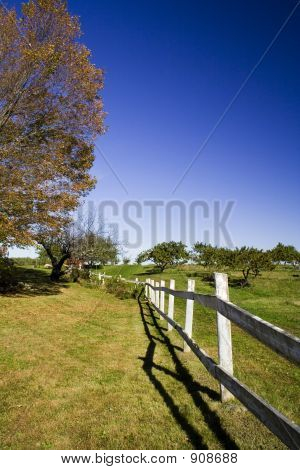 Fence_2244