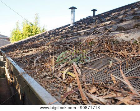 Fire danger in roof gutters