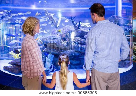 Familly looking at fish tank at the aquarium