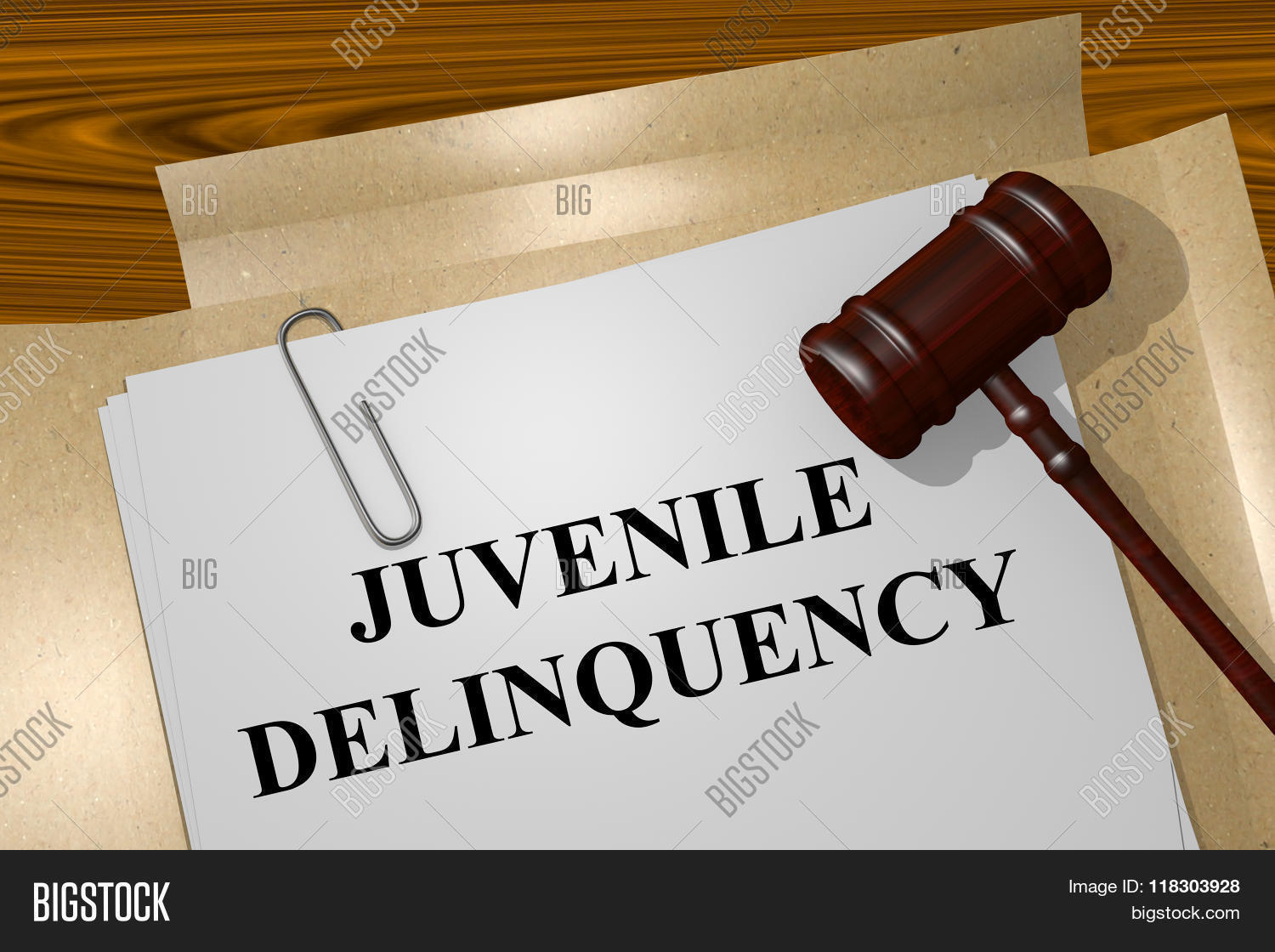 female juvenile delinquency The coalition for juvenile justice (cjj) envisions a nation where fewer children are at risk of delinquency and if they are at risk or involved with the justice system, they and their families receive every possible opportunity to live safe, healthy and fulfilling lives.