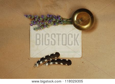 Vintage Background With Old Postcard, Snuffbox, Bouquet Of Lavender And  Woodpecker Feathers