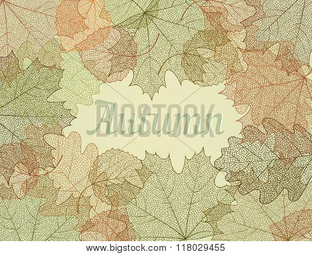 Autumn abstract background.