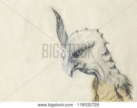 chicken dragon on old paper background. ocre color.