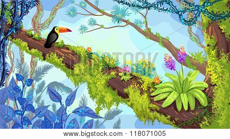 Jungle Forest. Illustration Of Toucan Sitting On The Tree. Vector Hand-drawn Rainforest
