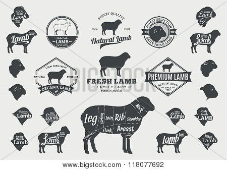 Vector Lamb Logo, Icons, Charts And Design Elements