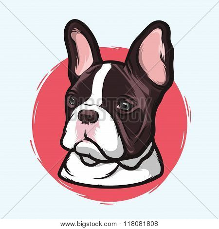 Closeup Portrait Of The Domestic Dog French Bulldog Breed On The White Background. Hand Drawn Line A
