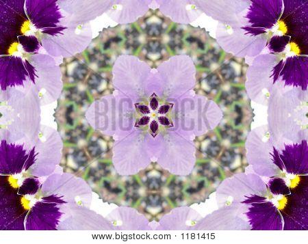 Stock Image Of Pansies Kaleidoscope