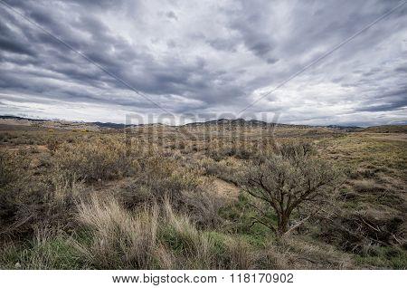 Landscape In Colorado