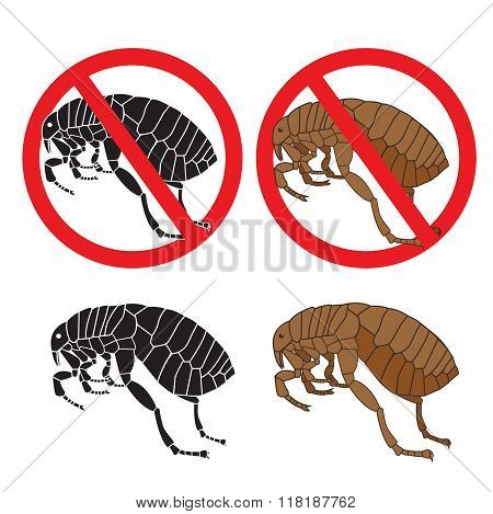 Flea Signs. Danger Sign. Flea And Hygiene. Stock Flea. Picture A Flea. Symbol Vector. Flea In The Sign. Colour Flea. Color Image Fleas. Black Picture Fleas. Flea Insect. Warning Signs. Vector Set.