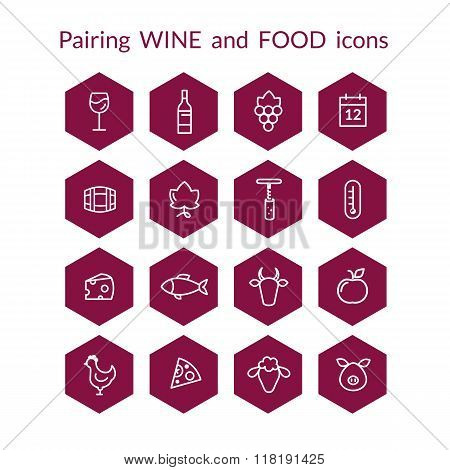 Hexagonal wine and food pairing icons