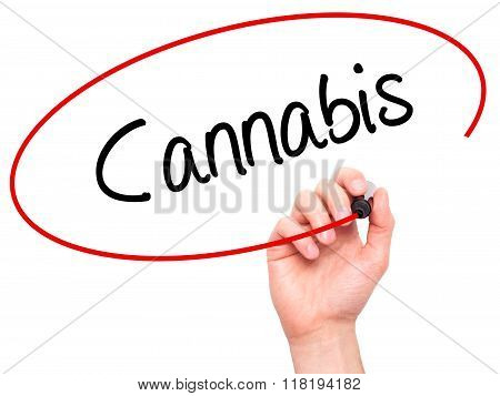 Man Hand Writing Cannabis With Black Marker On Visual Screen