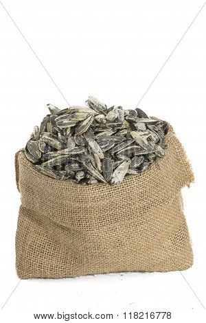 Sunflower seeds in sack on white background
