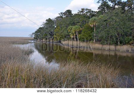 Marsh area of Fort McAllister State Park