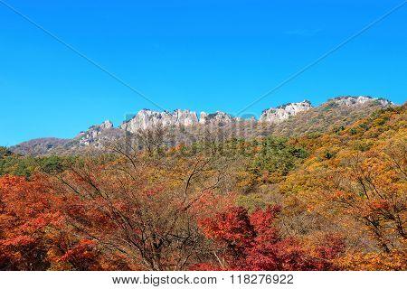 Seoraksan National Park In Autumn,korea.