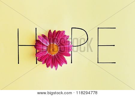 Inscription hope with pink flower on green background