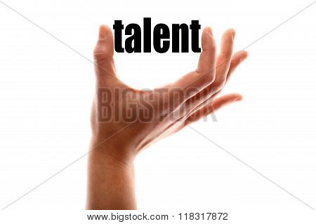 Less Talent Metaphor