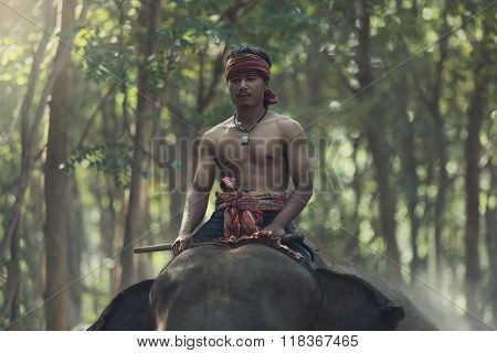 Mahout Riding On Elephant Back