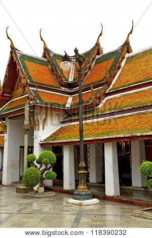 Pavement Gold    Temple   In   Bangkok  Plant