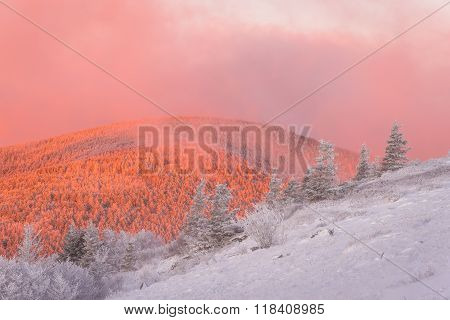 Winter In The Blue Ridge Mountains 4