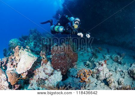 SCUBA diver on a deep tropical coral reef