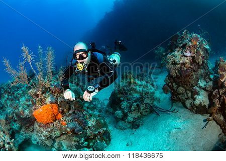 SCUBA diver on a tropical reef