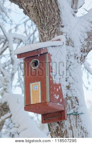 Painted Bird House Covered With Snow