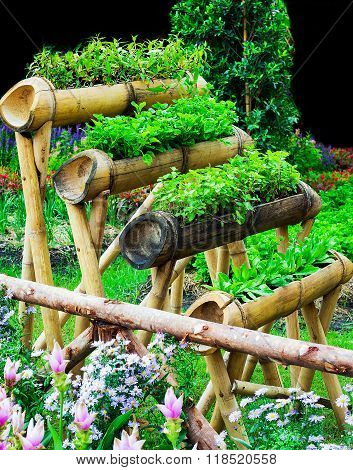 Organic vegetable garden planted by a bamboo floor.