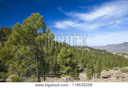Gran Canaria, Las Cumbres - The Highest Areas Of The Island