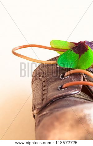 Detail of a leather shoe with lucky clover leaf and flexible stem as shoelace