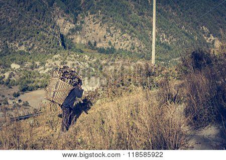 Farmer carrying firewood.