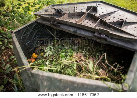 Plastic composter in a garden - filled with decaying organic material to be used as a fertilizer for growing home-grown, organic vegetables (shallow DOF)