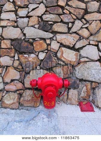 fire hydrant in front of rock wall