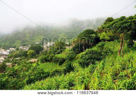 Crop Fields On The Hills O Nova Sintra