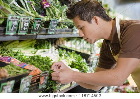 Sales assistant working in a supermarket