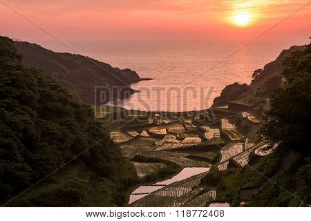 Sun and rice terraces