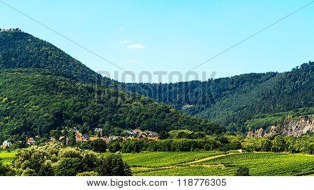 Obernai Alsace-green landscape with vineyards, France