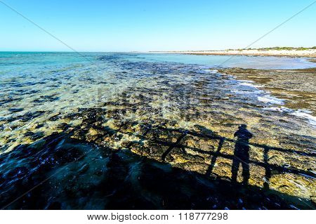 Stromatolites, Shark Bay, The oldest park in Western Australia