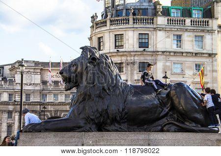 Barbary Lion At Trafalgar Square, London